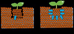 土壌密着の効果